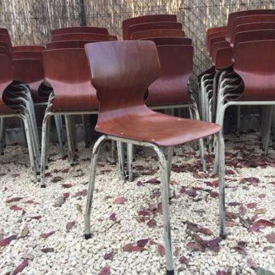 เก้าอี้ไม้อัดโรงเรียน pagholz กรอบสีน้ำตาล _GoodStuffFactory