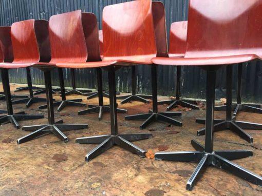 Sorte eccezionale delle sedie a conchiglia di pagholz con base a